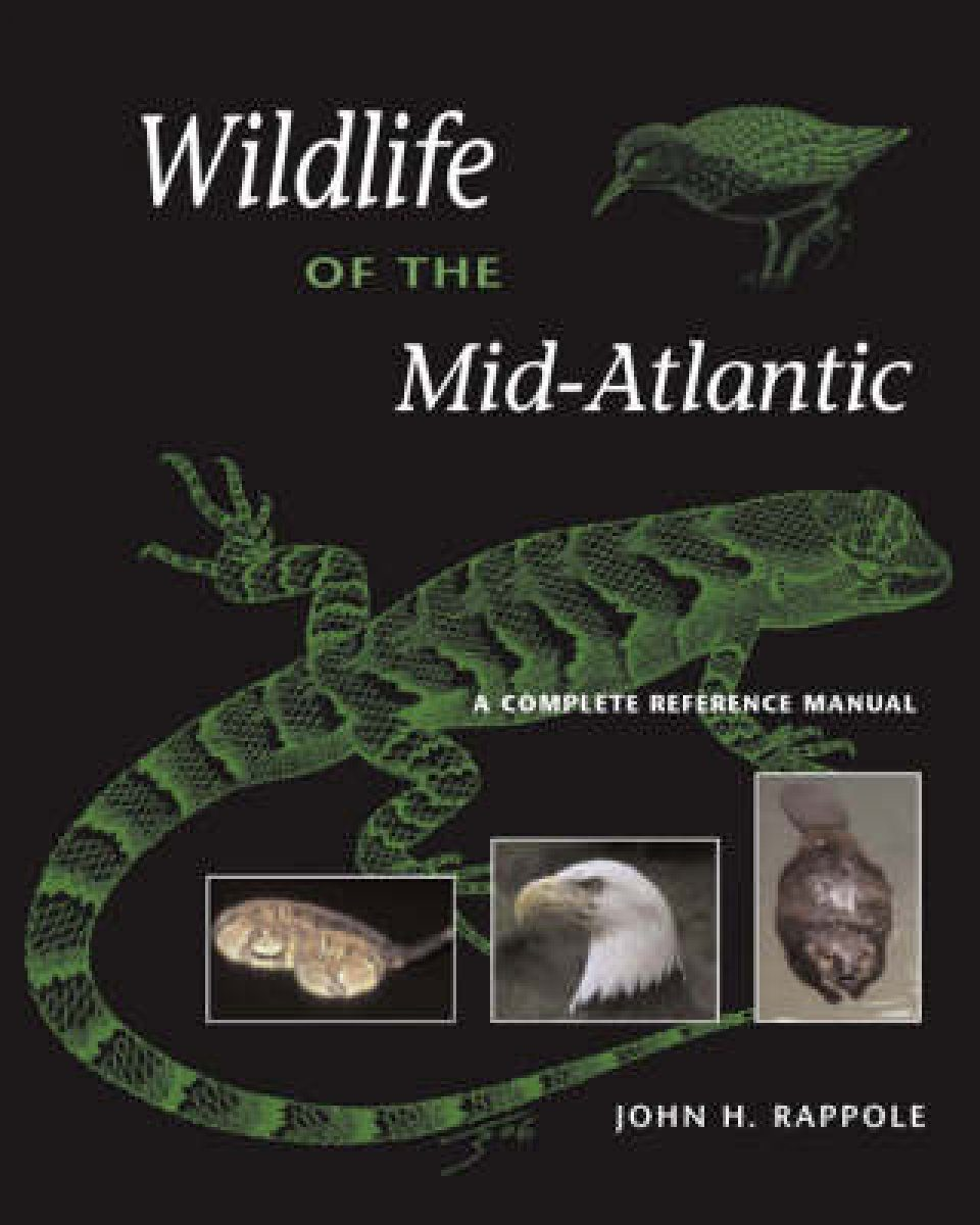 Wildlife of the Mid-Atlantic