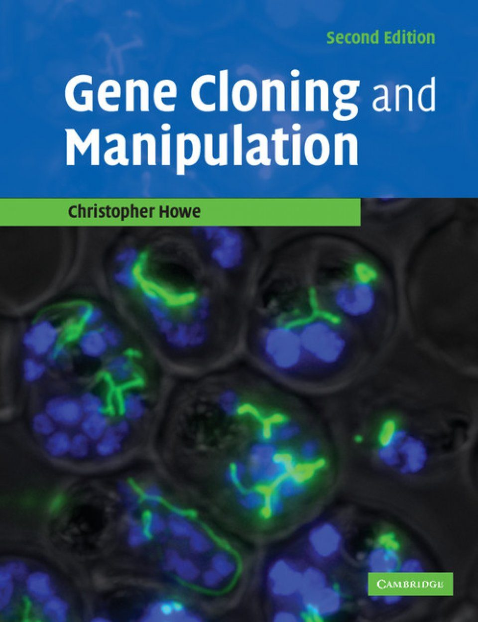 Gene Cloning and Manipulation