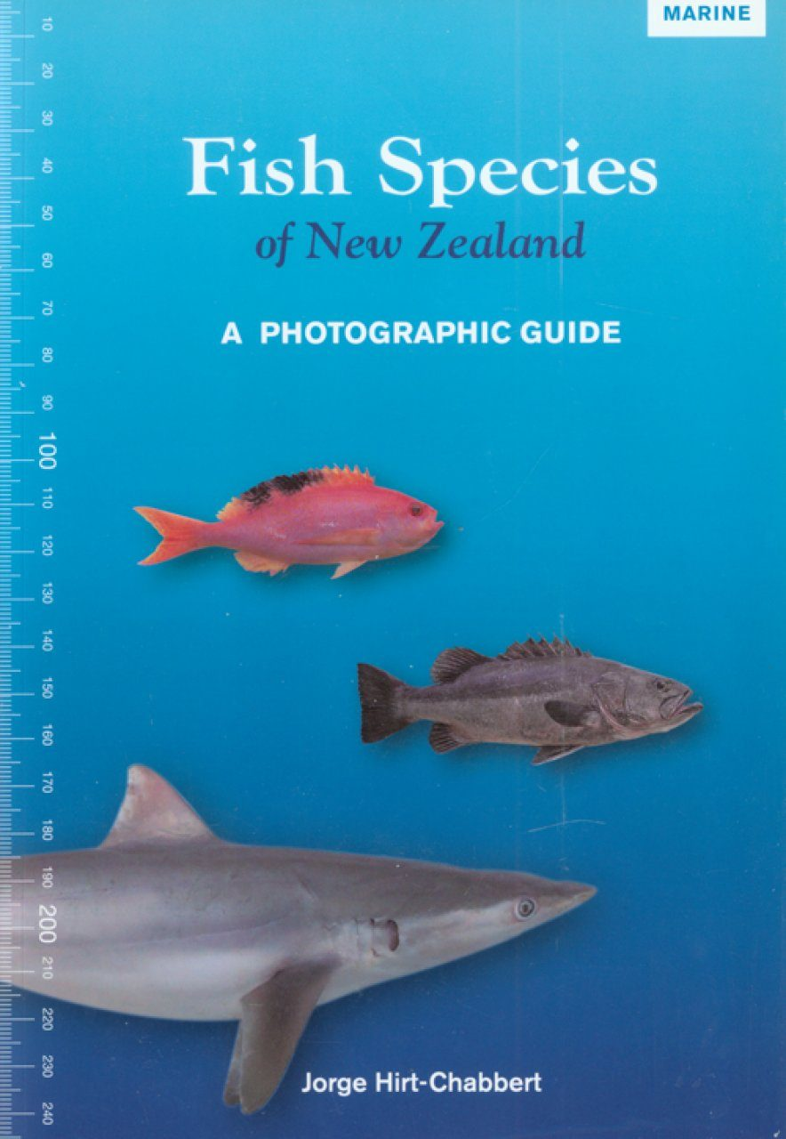 Fish species of new zealand a photographic guide jorge hirt fish species of new zealand a photographic guide sciox Gallery