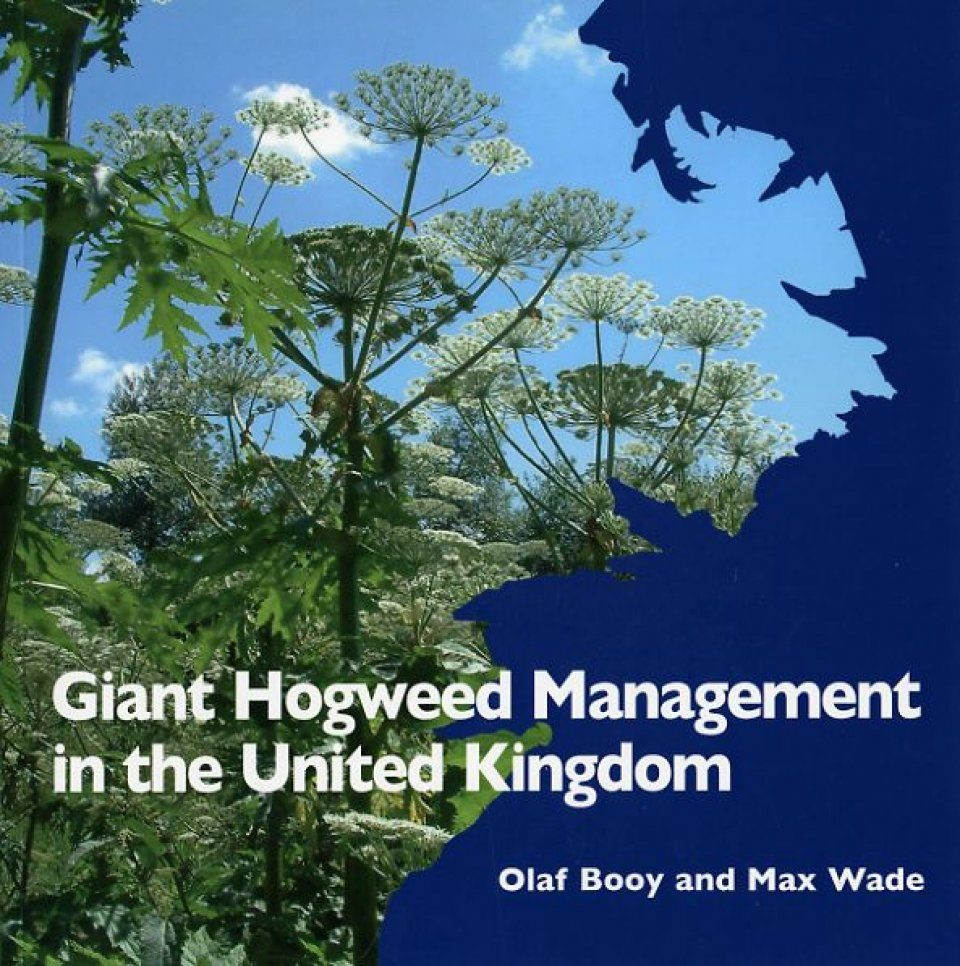 Giant Hogweed Management in the United Kingdom
