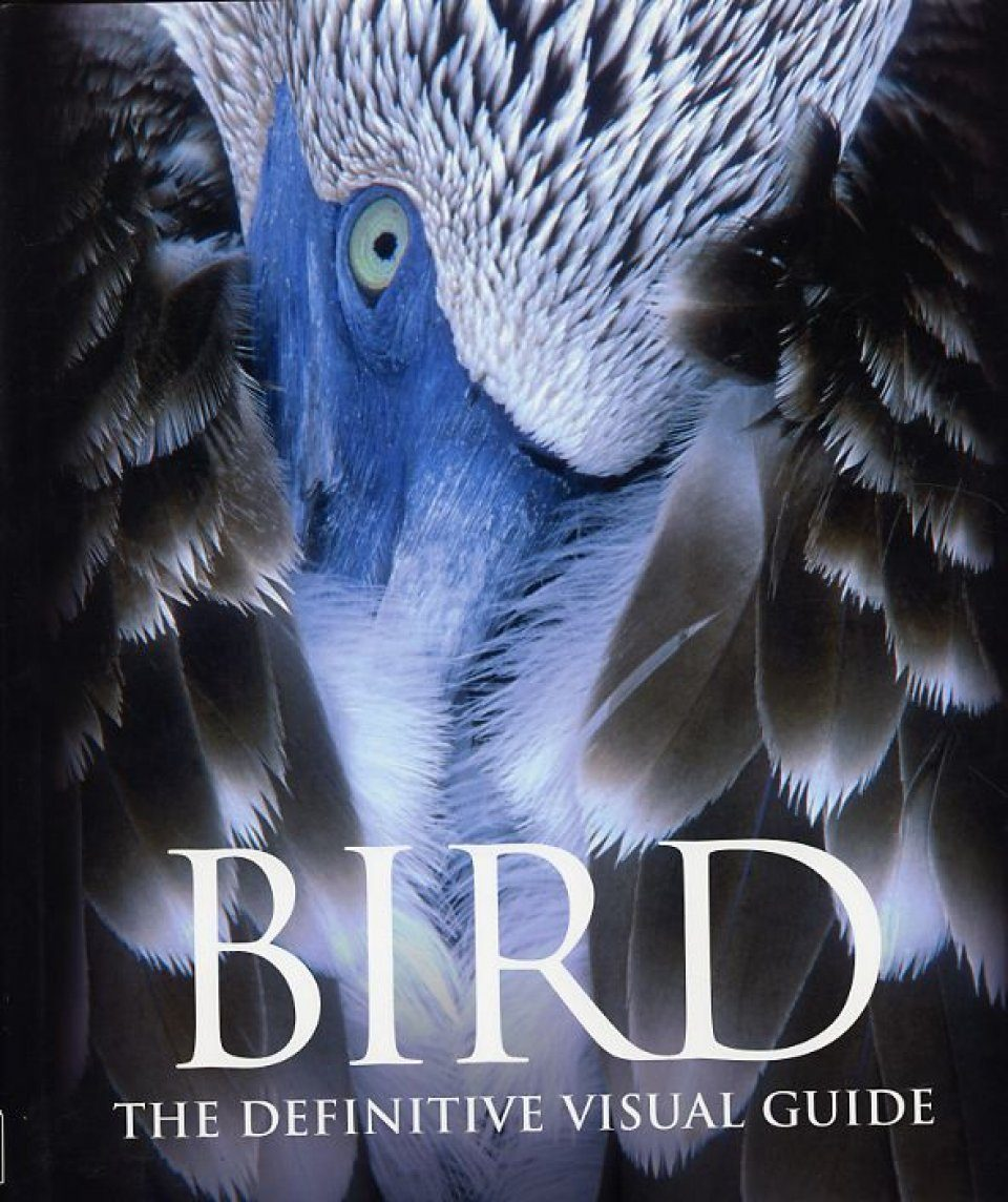 Bird: The Definitive Visual Guide