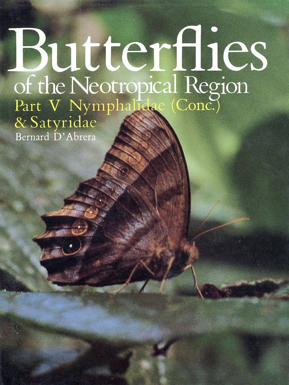 Butterflies of the Neotropical Region, Part 5
