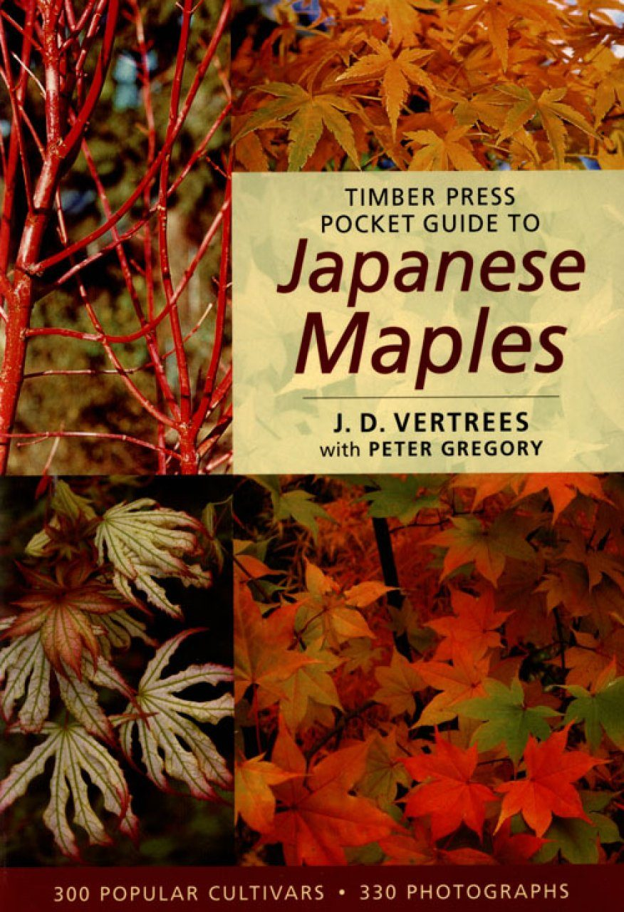 timber press pocket guide to japanese maples jd vertrees and peter rh nhbs com a guide to mpeg fundamentals slide a guide to mpeg fundamentals slide