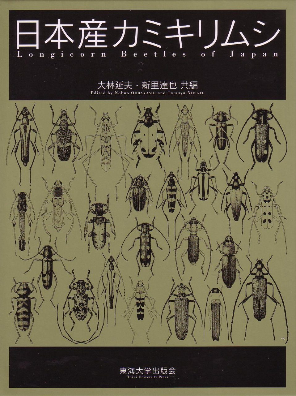 Longicorn Beetles of Japan [Japanese]