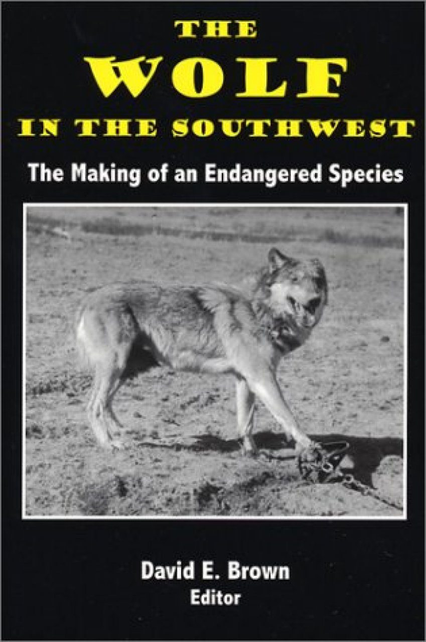 The Wolf in the Southwest