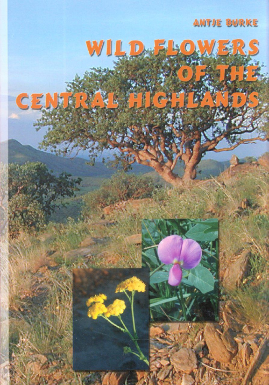 Wild Flowers of the Central Highlands
