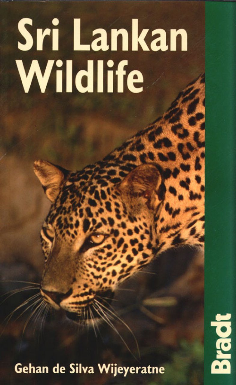 Bradt Wildlife Guide: Sri Lankan Wildlife