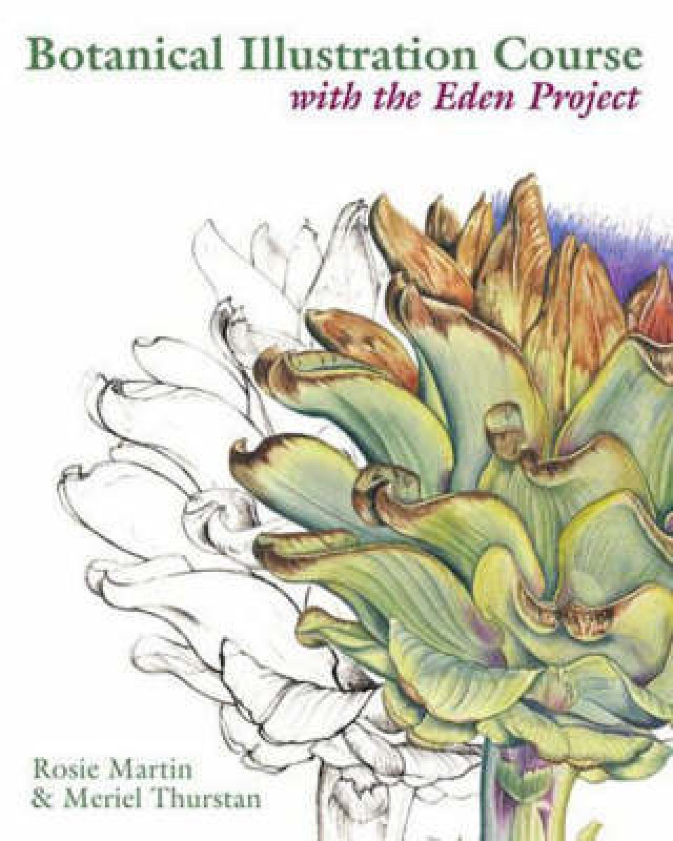 Botanical Illustration Course with the Eden Project