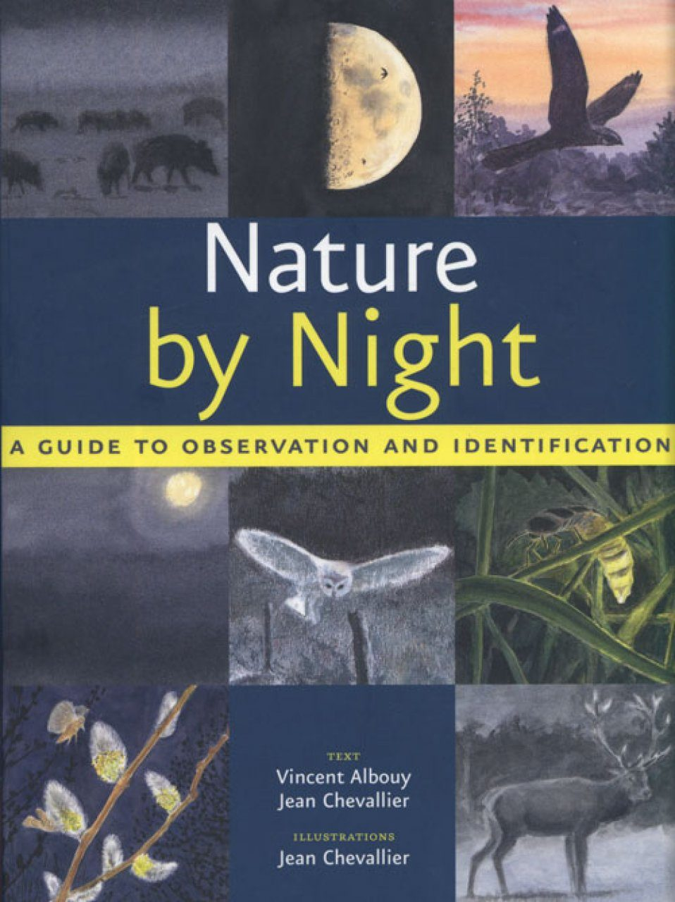 Nature by Night