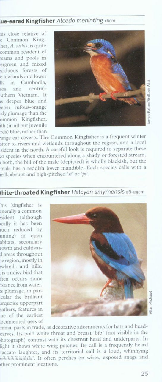 A Photographic Guide to Birds of Vietnam, Cambodia and ...