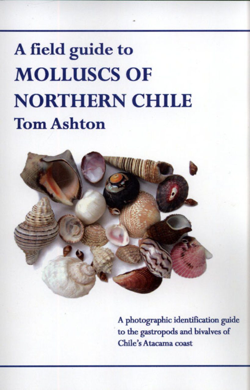 A Field Guide to Molluscs of Northern Chile