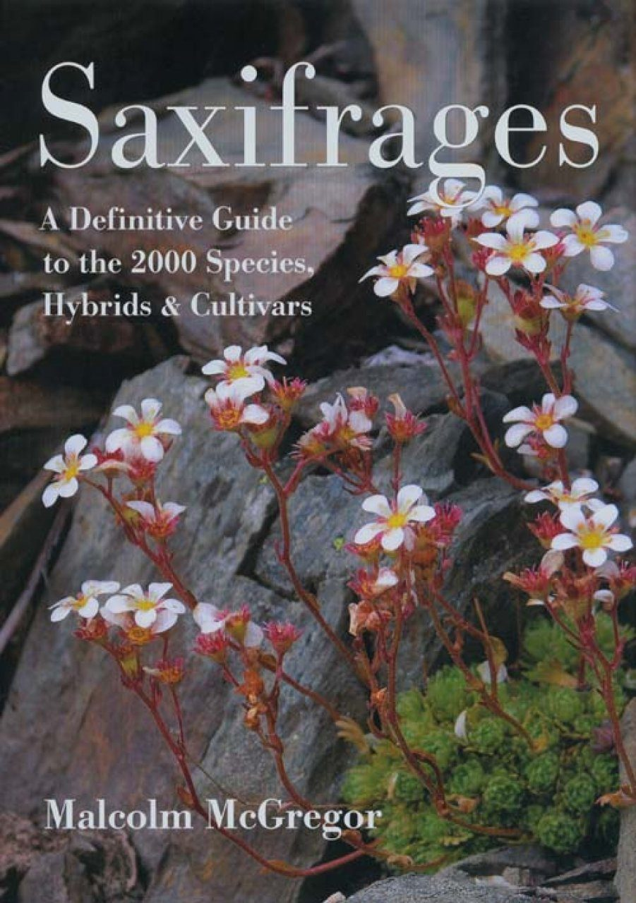 Saxifrages: A Definitive Guide to 2000 Species, Hybrids and Cultivars