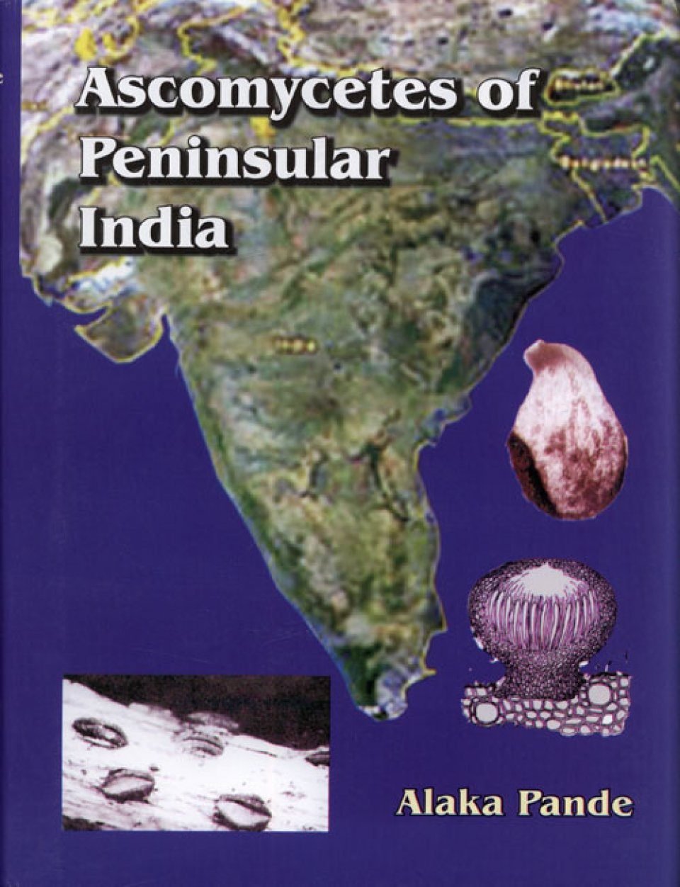 Ascomycetes of Peninsular India