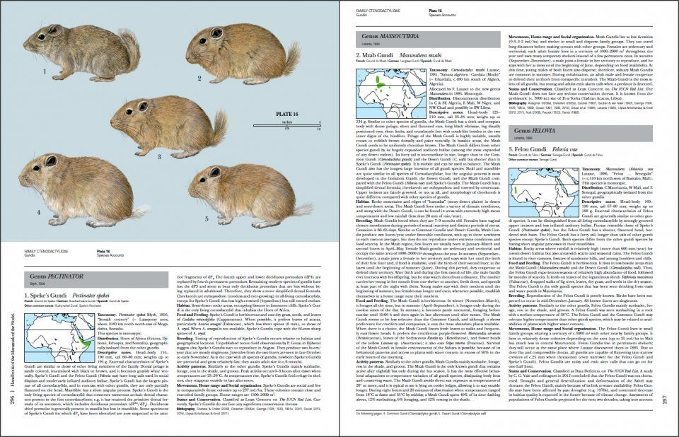 the world of mammals simulation feedback Simulation exercises rabies is a viral disease that affects the central nervous system of mammals rabies is rife in two-thirds of the world's countries.