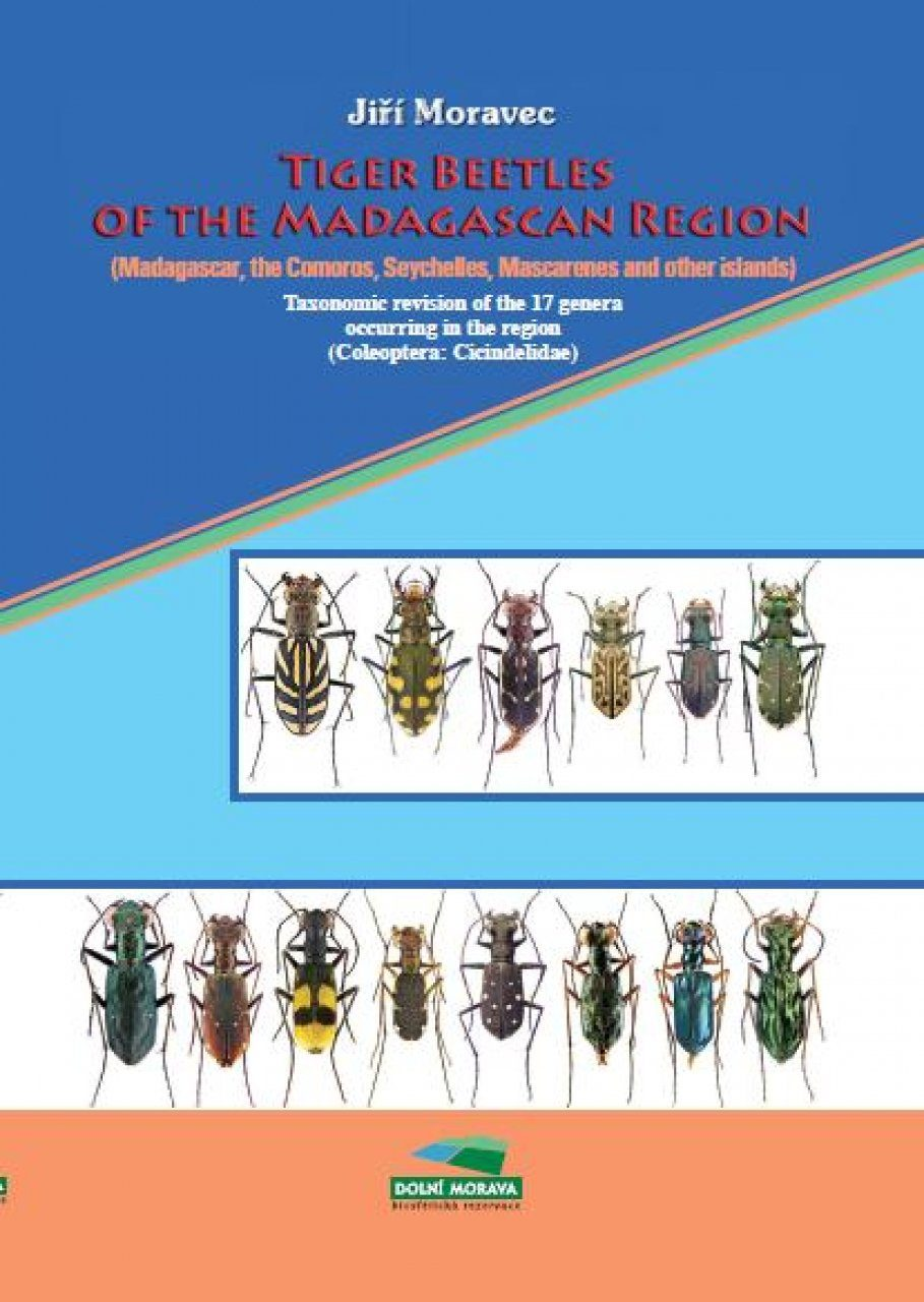 Tiger Beetles of the Madagascan Region (Madagascar, Comoros, Seychelles, Mascarenes and other islands)