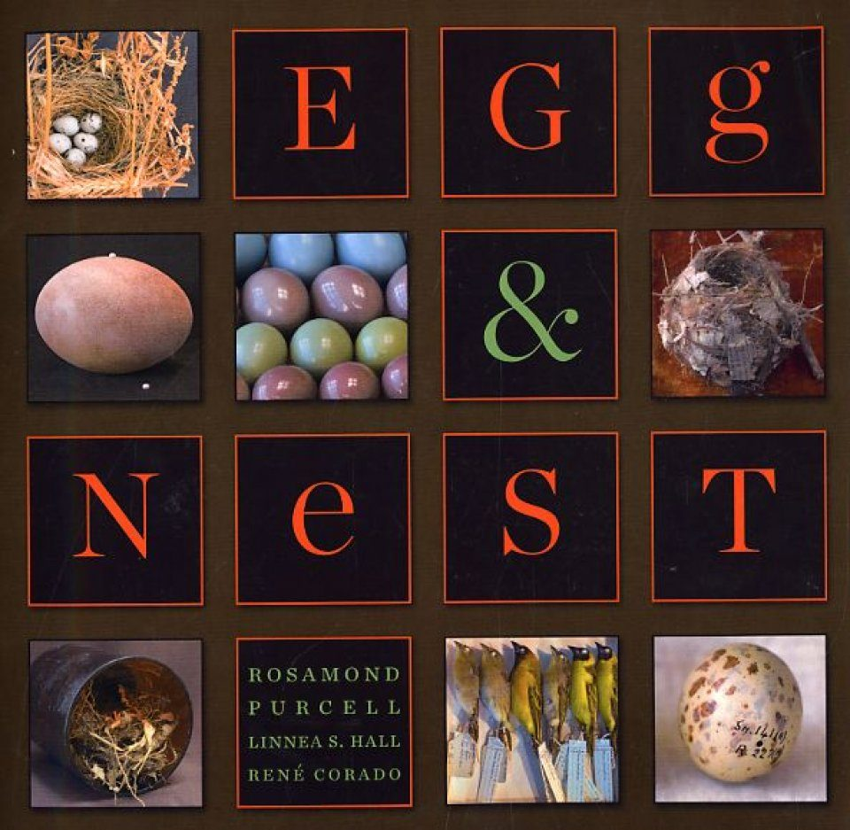 Egg and Nest