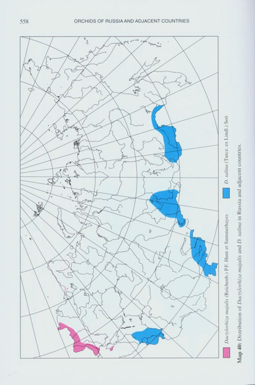 Orchids of Russia and Adjacent Countries: (within the borders of the ...