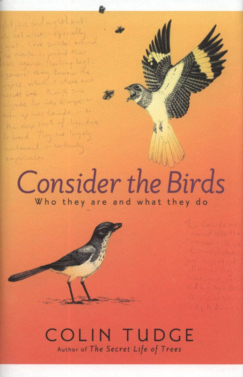 Consider the Birds Who they are and what they do