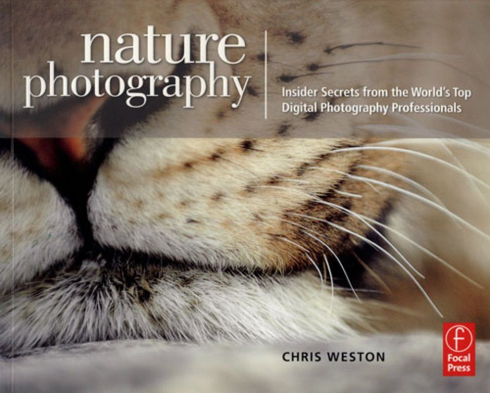 The best photography books for beginners