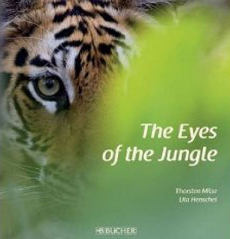 The Eyes of the Jungle