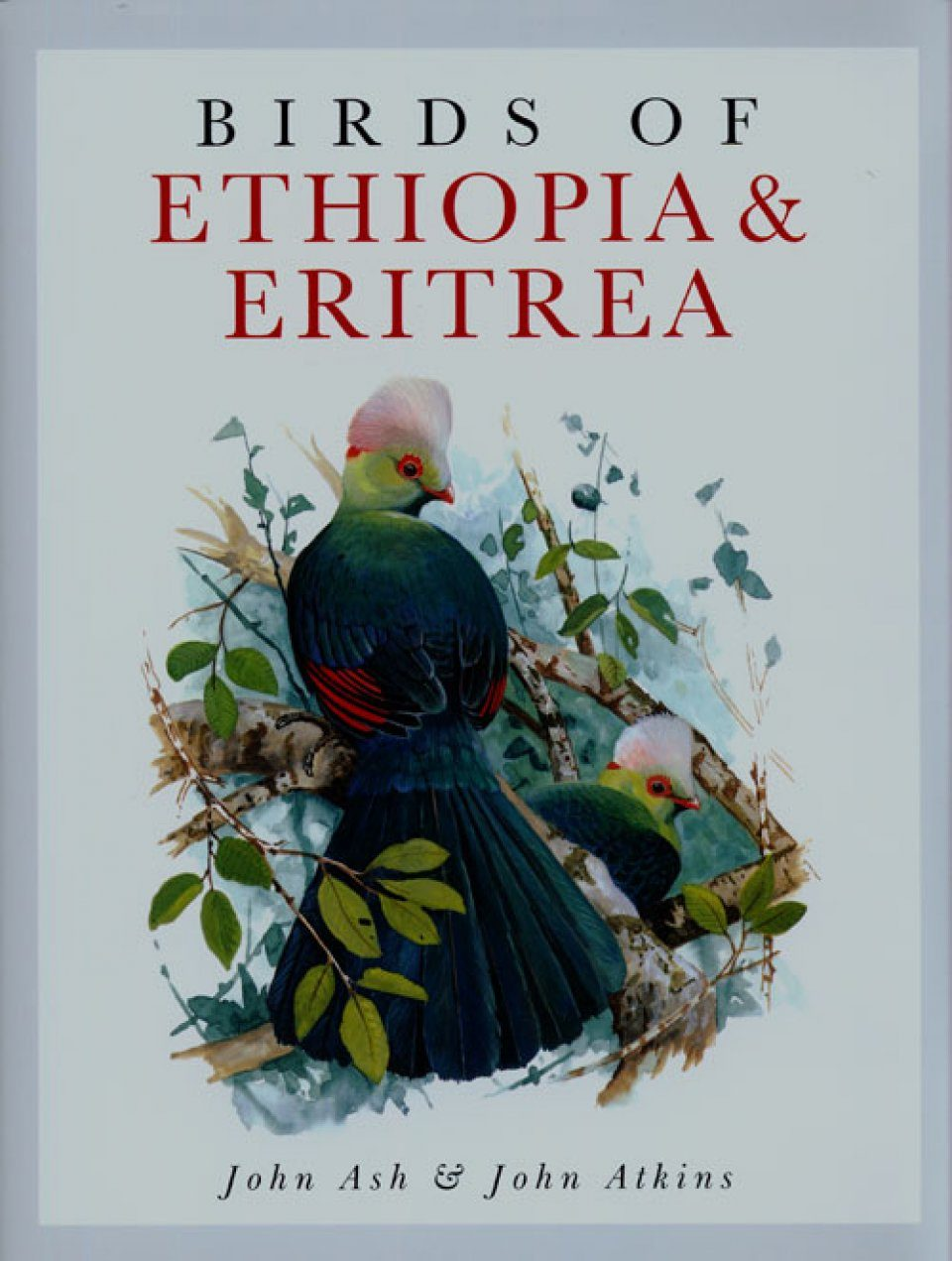 Birds of Ethiopia and Eritrea