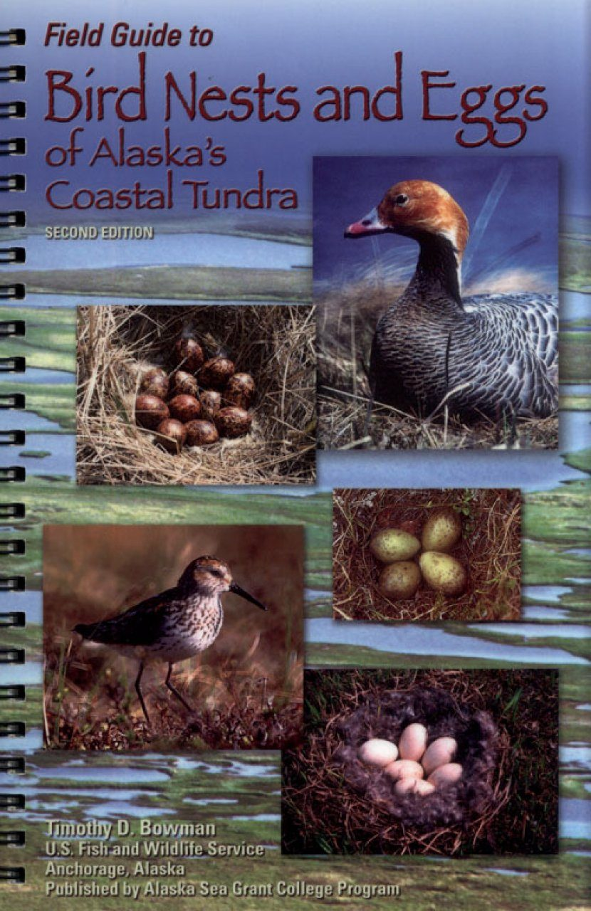Field Guide to Bird Nests and Eggs of Alaska's Coastal Tundra