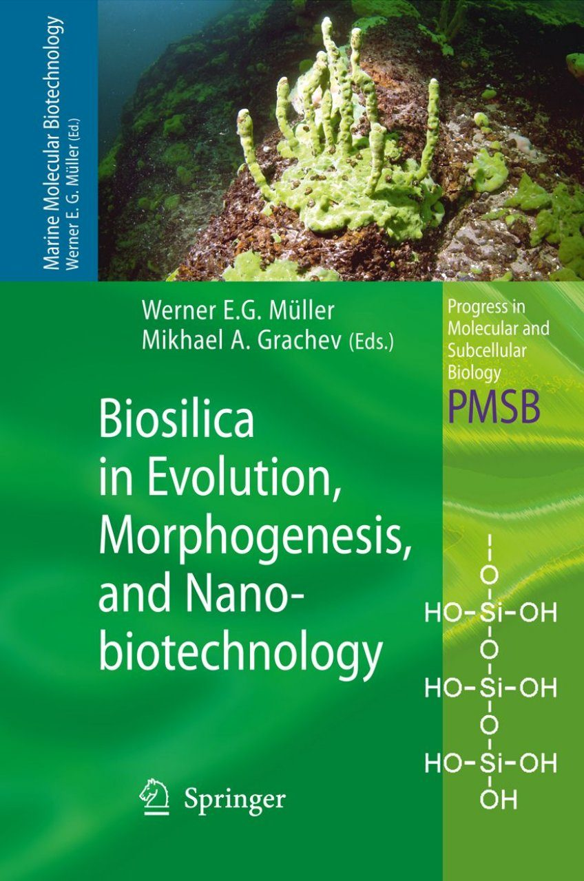 Biosilica in Evolution, Morphogenesis, and Nanobiotechnology