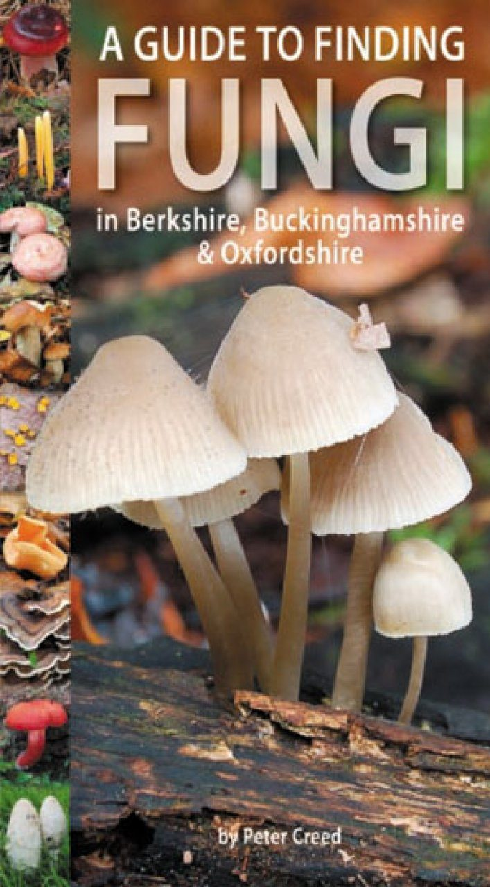 A Guide to Finding Fungi in Berkshire, Buckinghamshire & Oxfordshire