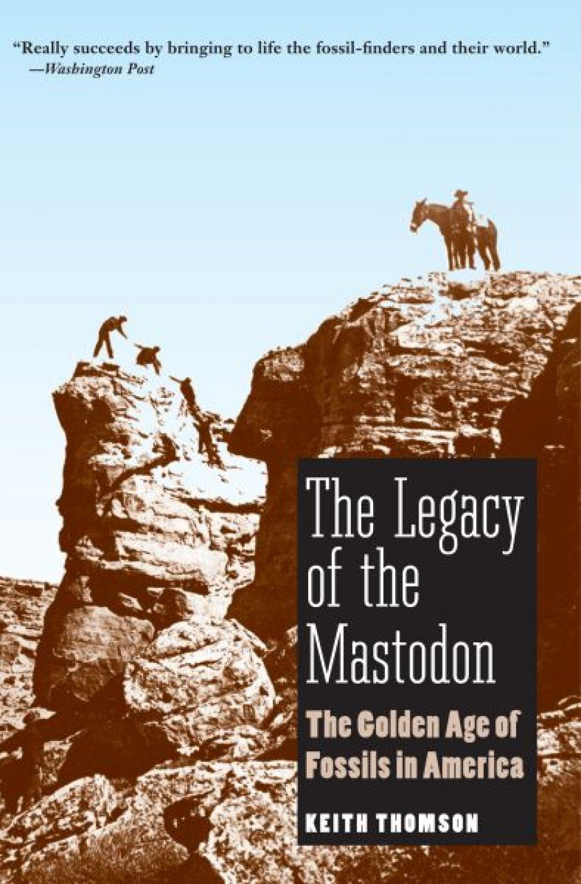 The Legacy of the Mastodon