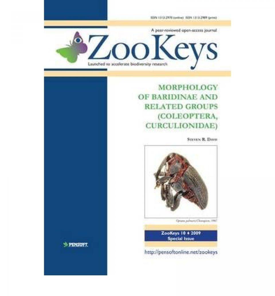 ZooKeys 10: Morphology of Baridinae and Related Groups (Coleoptera, Curculionidae)