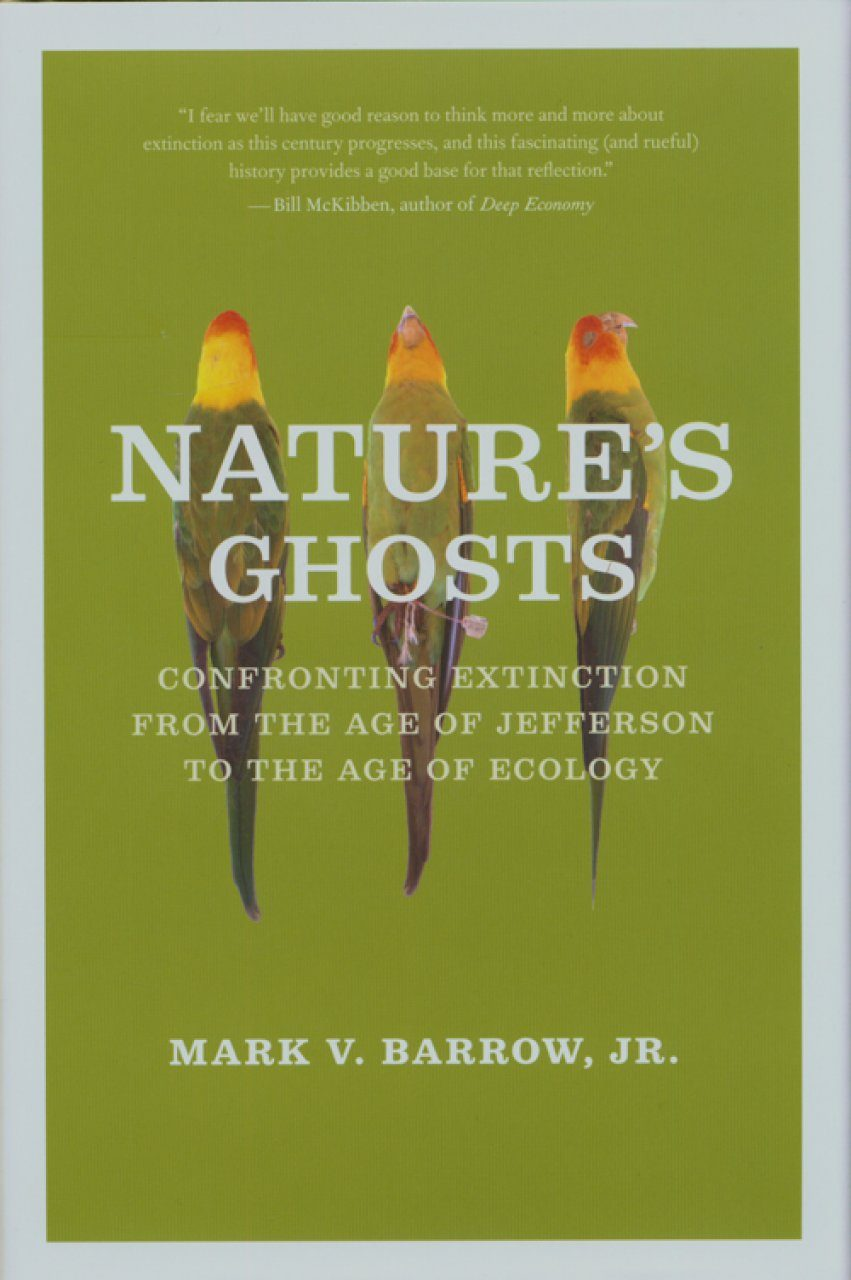 Nature's Ghosts