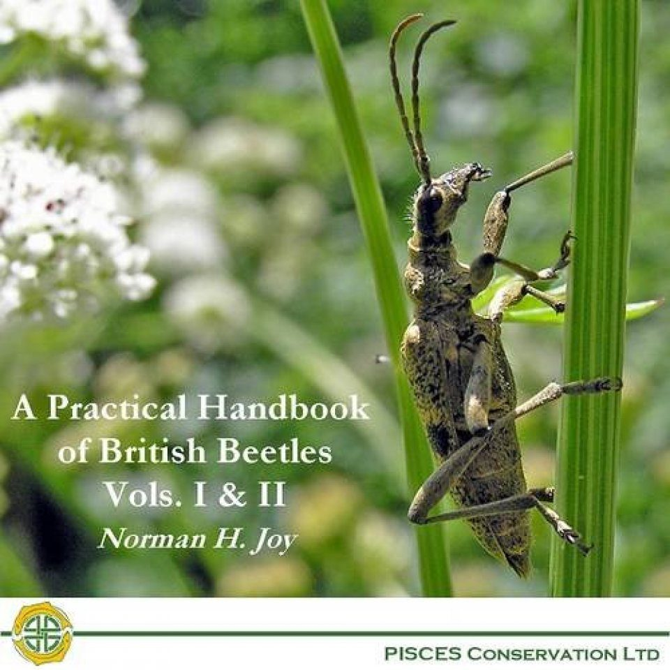 A Practical Handbook of British Beetles, Vols I & II