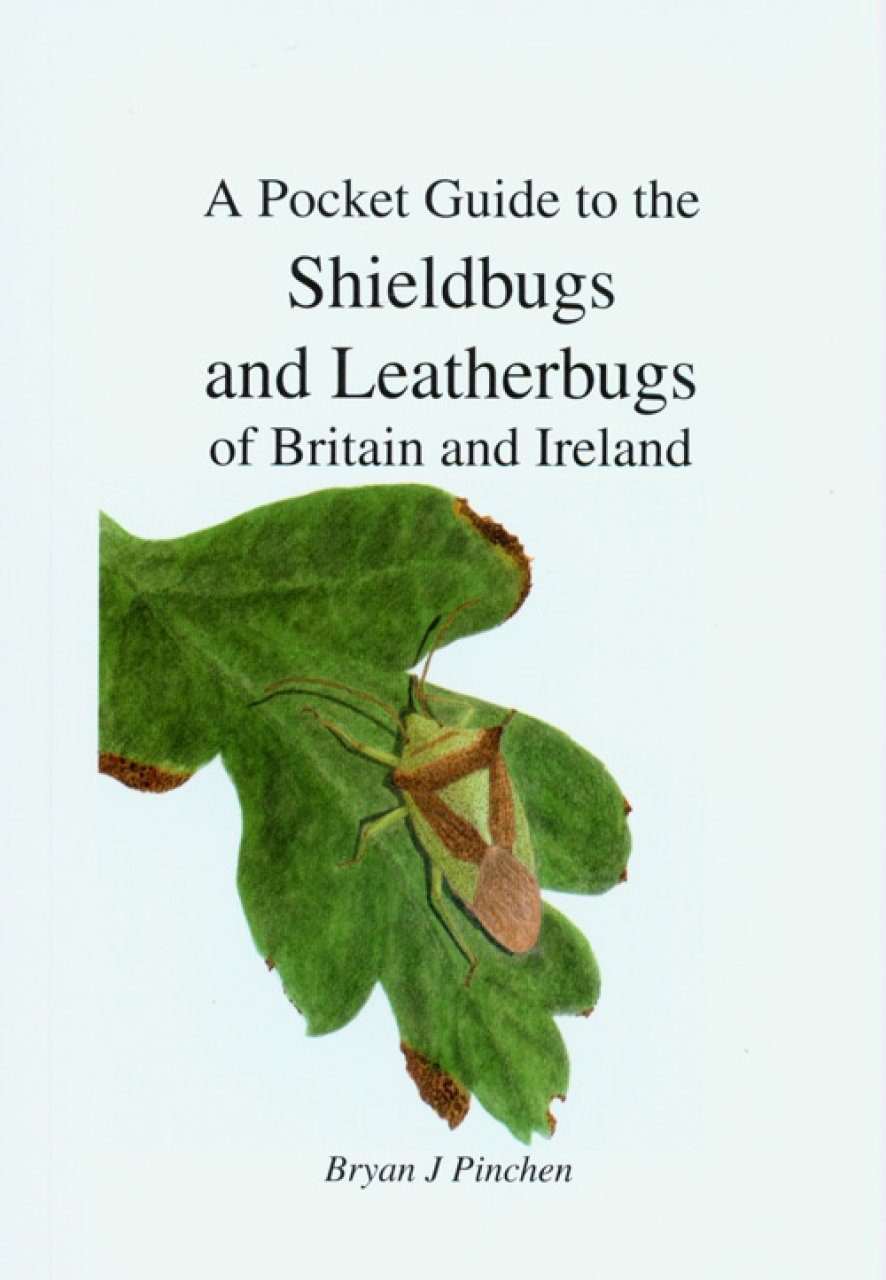 A Pocket Guide to the Shieldbugs and Leatherbugs of Britain and Ireland