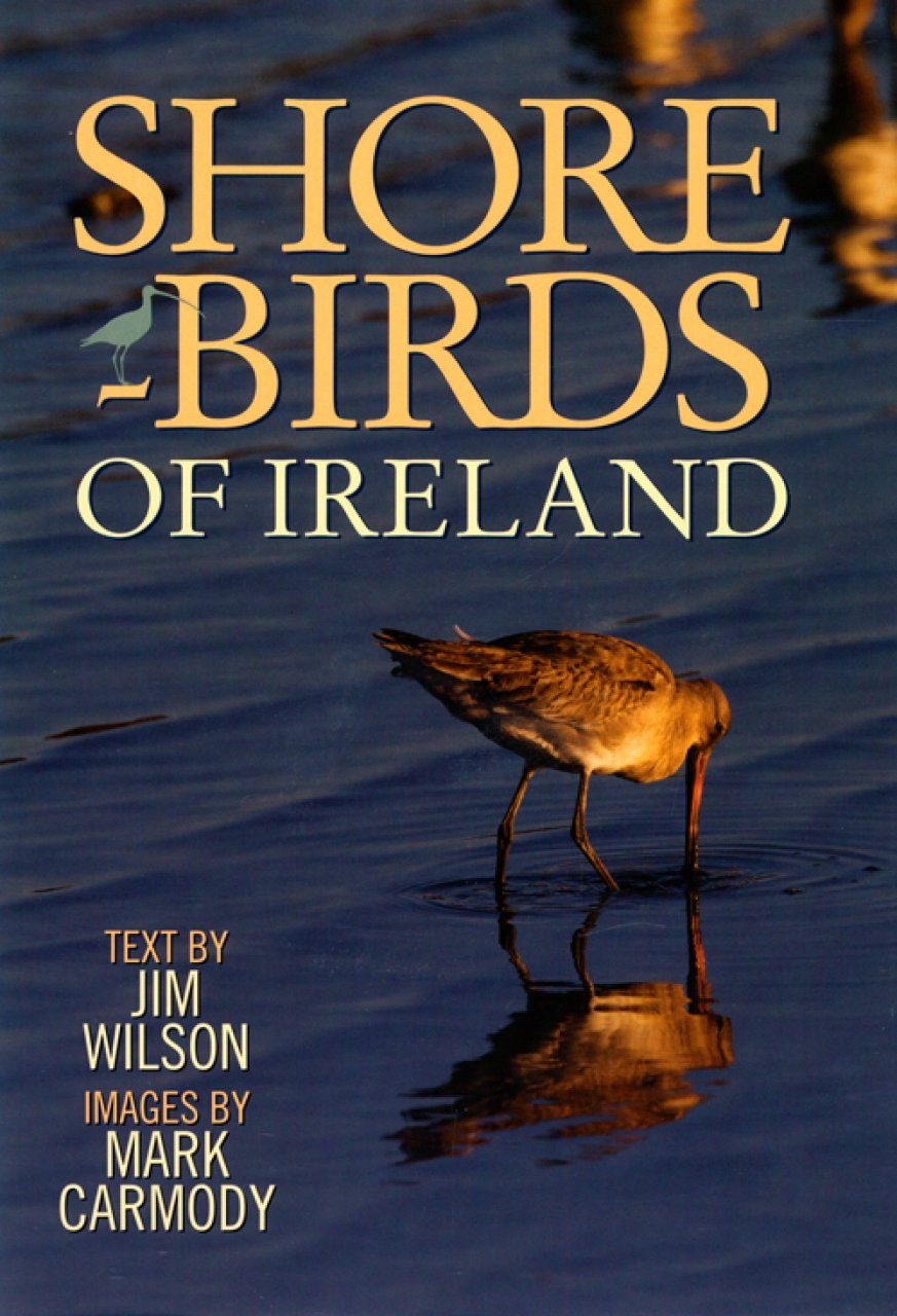 Shorebirds of Ireland