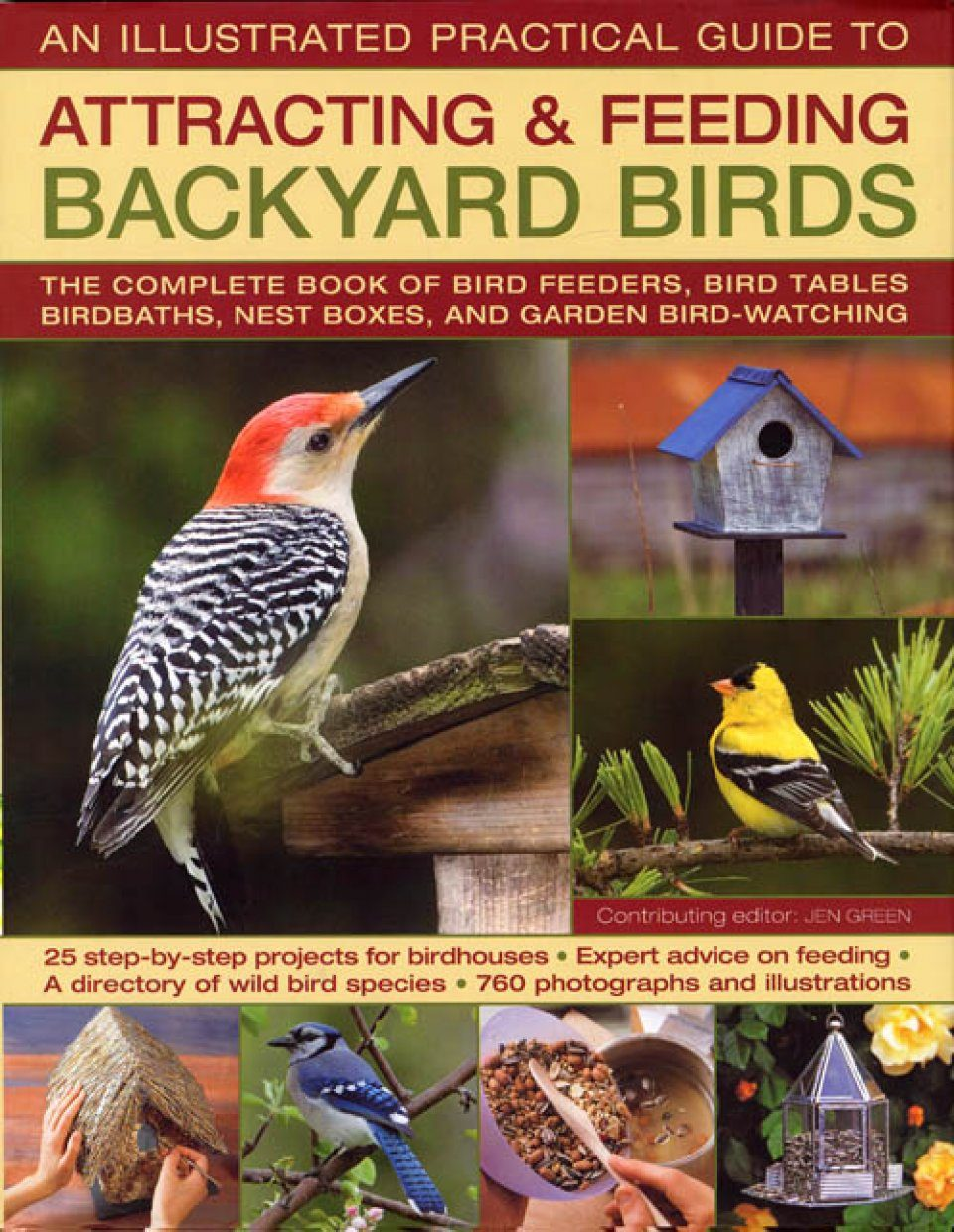 The Illustrated Practical Guide to Attracting and Feeding Backyard Birds