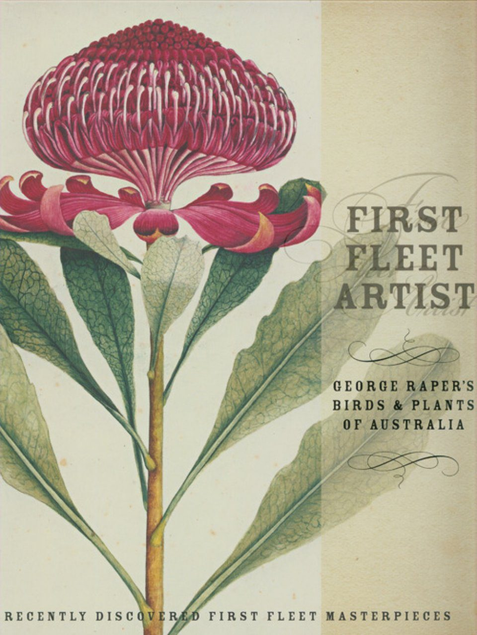 First Fleet Artist: George Raper's Birds and Plants of Australia