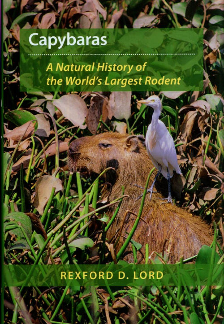 Capybaras: A Natural History of the World's Largest Rodent