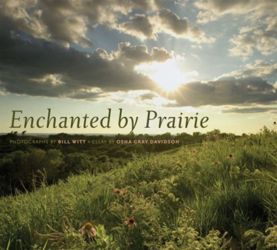 Enchanted by Prairie