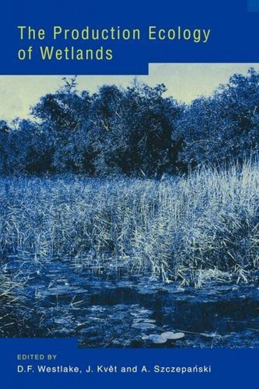 The Production Ecology of Wetlands