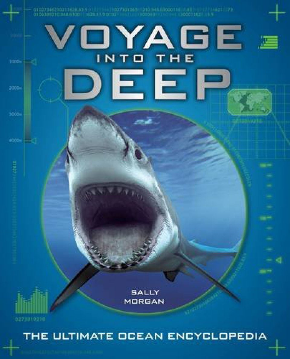 Voyage into the Deep: An Undersea Journey Around the Planet
