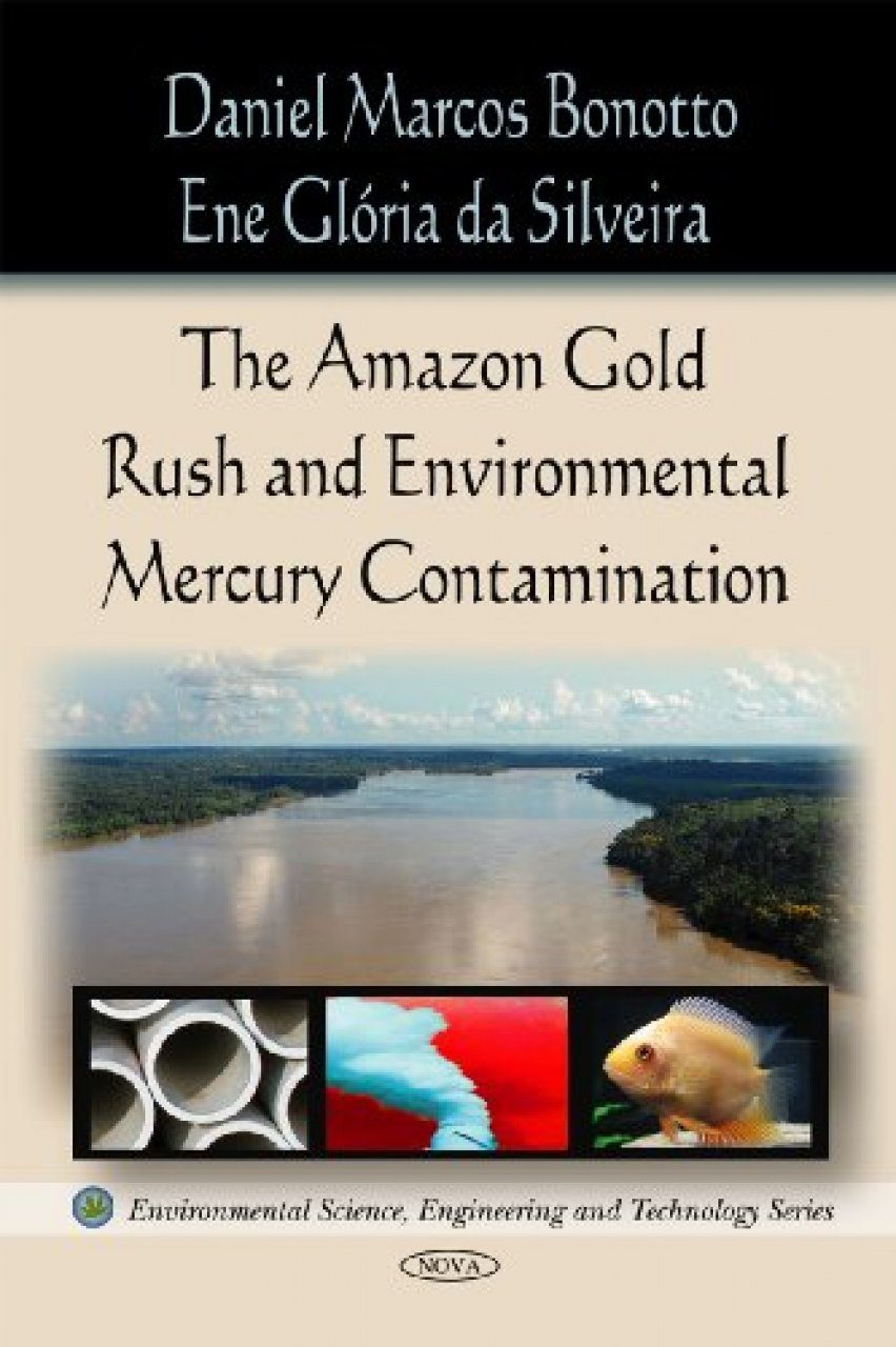 The Amazon Gold Rush and Environmental Mercury Contamination