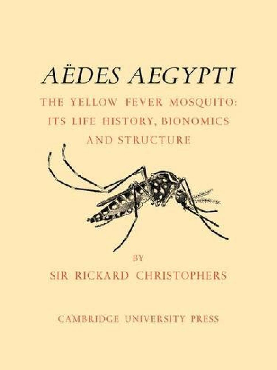 Aedes Aegypti the Yellow Fever Mosquito