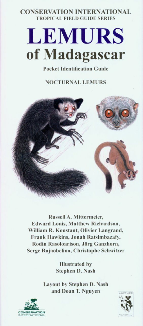 Lemurs of Madagascar: Nocturnal Lemurs