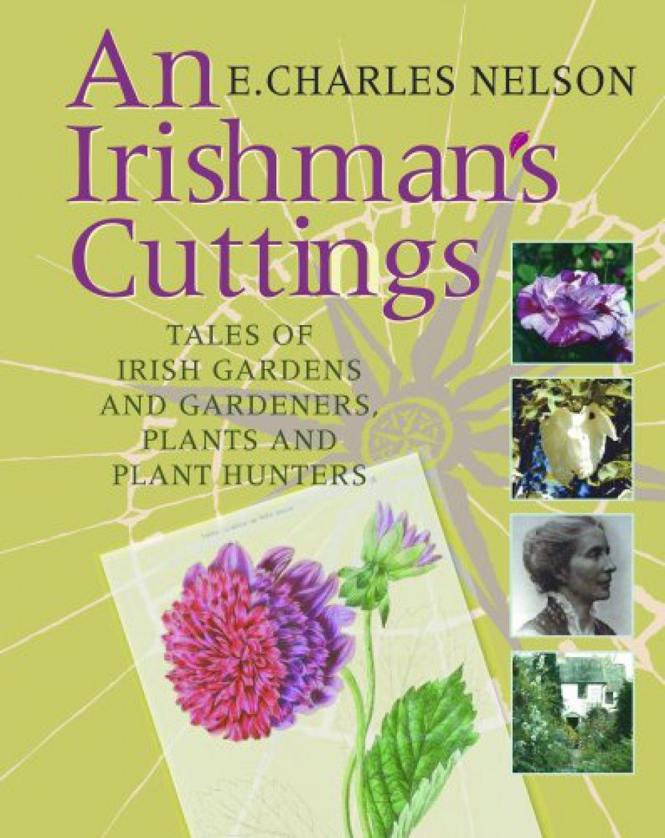 An Irishman's Cuttings
