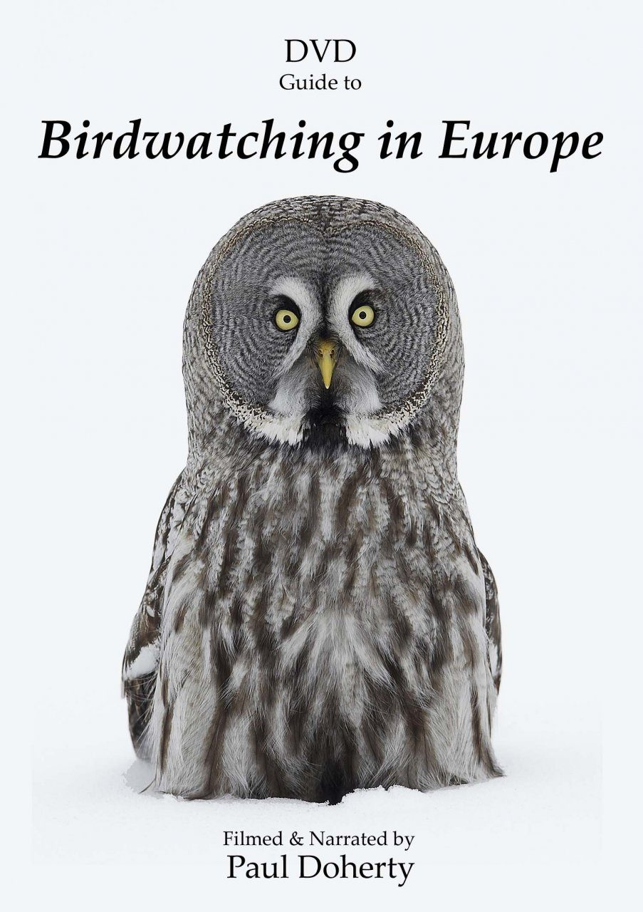 DVD Guide to Birdwatching in Europe (All Regions)