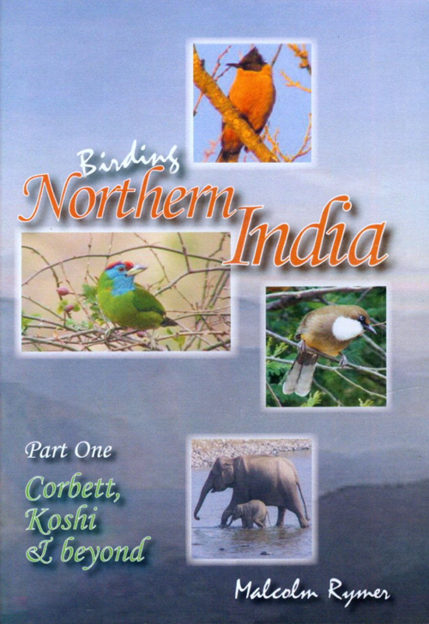 Birding Northern India, Part 1 (All Regions)