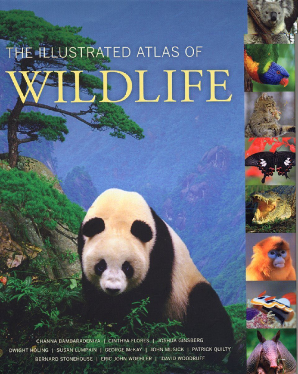 The Illustrated Atlas of Wildlife