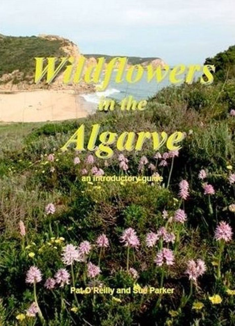Wildflowers in the Algarve