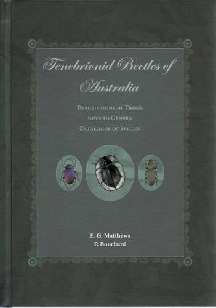 Tenebrionid Beetles of Australia