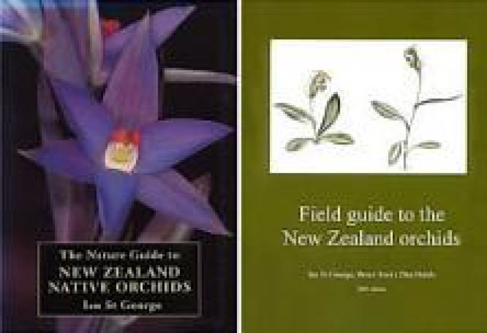 The New Zealand Orchids